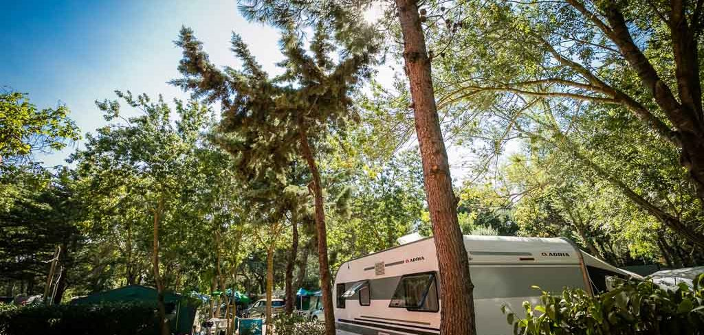 camping caravaning Canet