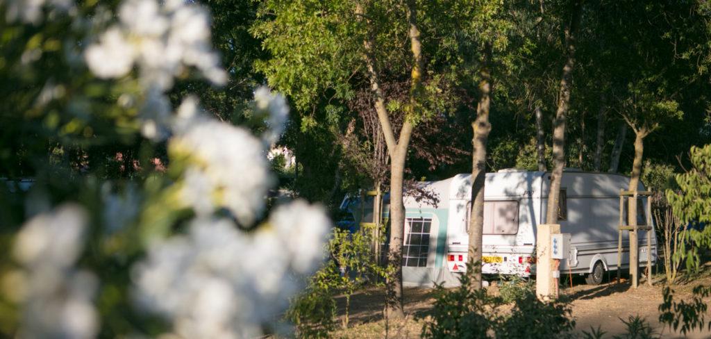 camping caravaning Canet en Roussillon